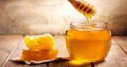 فواید عسل برای لاغری ؛ زمان مناسب  و نحوه مصرف عسل برای کاهش وزن