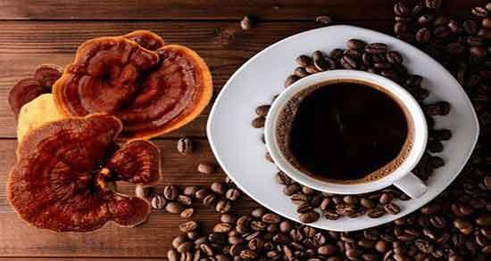 خواص قهوه گانودرما ؛ سوپریم موکا برای لاغری و زگیل تناسلی و طریقه مصرف