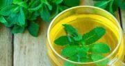 چای نعناع برای معده ؛ درمان نفخ و ورم معده با نوشیدن چای نعناع