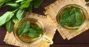 چای نعناع در بارداری ؛ آیا زنان باردار مجاز به استفاده از چای نعناع هستند