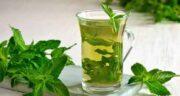 چای نعناع در حاملگی ؛ بررسی تاثیراتی که چای نعناع برای جنین و زن باردار دارد