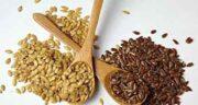 عوارض مصرف زیاد بذر کتان ؛ مضرات مصرف زیاد تخمه کتان چیست