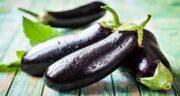فواید پوست بادمجان سیاه ؛ خواص بادمجان سیاه برای کودکان
