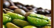 قهوه سبز و کبد چرب ؛ ایا قهوه سبز کبد چرب را خوب میکند
