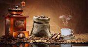 خواص قهوه در بارداری ؛ مصرف قهوه گانودرما در دوران بارداری