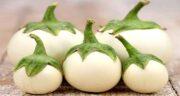خواص پوست بادمجان سفید ؛ فواید مصرف پوست بادمجان سفید