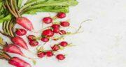 خواص تربچه و برگ آن ؛ برگ تربچه در چه غذاهایی استفاده میشود