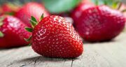 خواص توت فرنگی در بدنسازی ؛ خواص توت فرنگی برای ورزشکاران