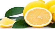 خواص پوست لیمو ترش در طب سنتی ؛ پوست لیمو ترش در طب سنتی