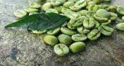 مضرات قهوه سبز ؛ مضرات قهوه سبز برای کبد چیست