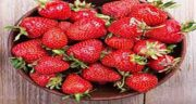 توت فرنگی و بارداری ؛ خوردن توت فرنگی در بارداری و زیبایی جنین