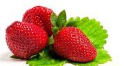 توت فرنگی و اسهال ؛ مصرف توت فرنگی باعث اسهال میشود