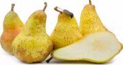 استفاده از گلابی ؛ از میوه گلابی برای چه مواردی می توان استفاده کرد؟