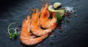 خواص میگو در طب سنتی ؛ میگو سرشار از پروتئین و مواد مغذی