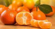 خواص نارنگی برای کرونا ؛ مقابله با ویروس کرونا با خوردن نارنگی