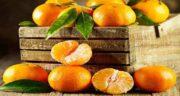 خواص نارنگی و لاغری ؛ کاهش وزن و تناسب اندام با خوردن نارنگی