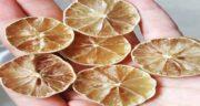 فواید لیمو سنگی خشک ؛ خواص درمانی و دارویی مصرف لیمو سنگی خشک