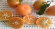 فواید نارنج برای پوست ؛ کاهش چین و چروک پوست با نارنج