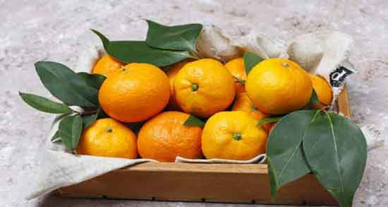 فواید نارنگی برای کرونا ؛ کاهش ابتلا به کرونا با خوردن نارنگی