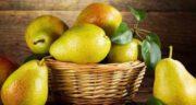 فواید گلابی ؛ فواید دارویی و درمانی میوه گلابی برای بدن