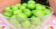 فواید گوجه سبز خشک شده ؛ خواص درمانی خوردن گوجه سبز خشک برای بدن