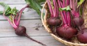 لبو و مدفوع قرمز ؛ تغیرر رنگ مدفوع با خوردن لبو