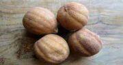 لیمو عمانی و دیابت ؛ خواص و مضرات مصرف لیمو عمانی برای افراد دیابتی