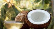 نارگیل را با چی بخوریم ؛ در کنار نارگیل چه مواد غذایی می توان استفاده کرد
