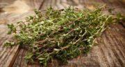 کاکوتی در طب سنتی ؛ خواص و مضرات گیاه کاکوتی