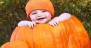 کدو حلوایی برای کودک شش ماهه ؛ استفاده از پوره کدو حلوایی برای غذای کمکی نوزاد