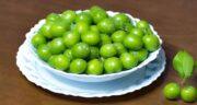 گوجه سبز کی میاد ؛ کدام فصل گوجه سبز به بازار می آید