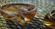چای کوهی برای زن باردار ؛ مضرات چای کوهی برای زن باردار چیست