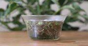 خواص چای کوهی برای دیابت ؛ فواید مصرف چای کوهی برای قند خون