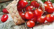 ماسک گوجه فرنگی برای پوست خشک ؛ گوجه فرنگی برای پوست چرب
