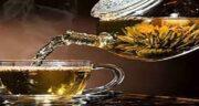 مضرات چای کوهی در بارداری ؛ عوارض چای کوهی در دوران بارداری