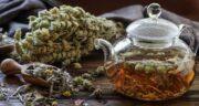 مضرات چای کوهی برای زن باردار ؛ ایا چای کوهی برای زن باردار مضره