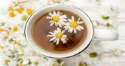 مضرات دمنوش گل بابونه ؛ عوارض مصرف دمنوش گل بابونه چیست