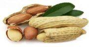 بادام زمینی و معده ؛ تاثیر مصرف بادام زمینی برای درمان معده درد