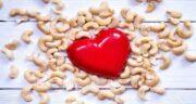 بادام هندی چیست ؛ آشنایی کامل با خواص درمانی و فواید بادام هندی