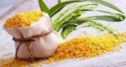 خواص ارزن و سیاه دانه ؛ کاهش خطر ابتلا به سرطان با مصرف ارزن و سیاه دانه