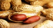 خواص بادام زمینی و یبوست ؛ پیشگیری و درمان یبوست با مصرف بادام زمینی