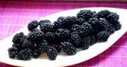 خواص توت سیاه برای کم خونی ؛ تاثیر خوردن توت سیاه برای درمان کم خونی