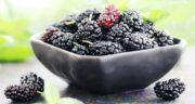 خواص توت سیاه برای کودکان ؛ کاهش خطر ابتلا به کم خونی در کودکان با خوردن توت سیاه