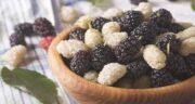 خواص توت سیاه و سفید ؛ آشنایی با خاصیت درمانی و تفاوت های توت سیاه و سفید