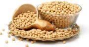 خواص و مضرات آجیل سویا ؛ آشنایی با فواید درمانی و مضرات مصرف آجیل سویا