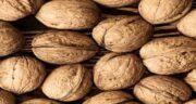 خواص گردو برای قلب ؛ کاهش خطر ابتلا به بیماری های قلبی با مصرف گردو