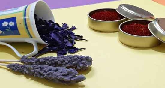 خواص گل گاوزبان با نبات ؛ فواید درمانی دم کردن گل گاوزبان با نبات