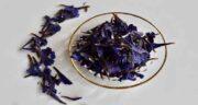 خواص گل گاوزبان در سرماخوردگی ؛ درمان گلو درد و سرماخوردگی با مصرف گل گاوزبان