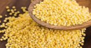 شکل دانه ارزن ؛ مشخصات و ویژگی های دانه ارزن چگونه است؟