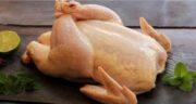 طبع گوشت خروس محلی گرم است یا سرد ؛ طبیعت گوشت خروس محلی چگونه است؟